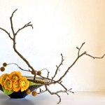 Ikebana: Decoration with flowers