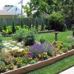 How to Protect Your Garden During the Summer Wave