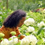 Building your Own Garden to Cultivate Flowers of Your Choice