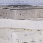 Differences between Memory Foam and Latex Foam