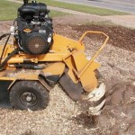 Step by Step Guide to removing troublesome tree stumps