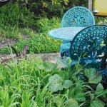 6 Silly Garden Decor Mistakes To Avoid