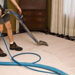 What To Look For In A Rug Cleaning Service