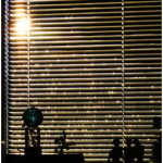 Types of Blinds That Will Definitely Suit Your Window