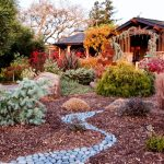 From Lighting to Composting: Creating a Crisp and Colourful Autumnal Garden